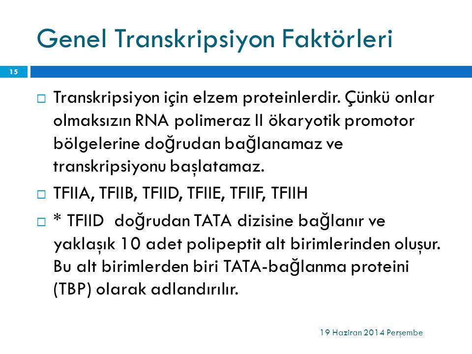 Genel Transkripsiyon Faktörleri