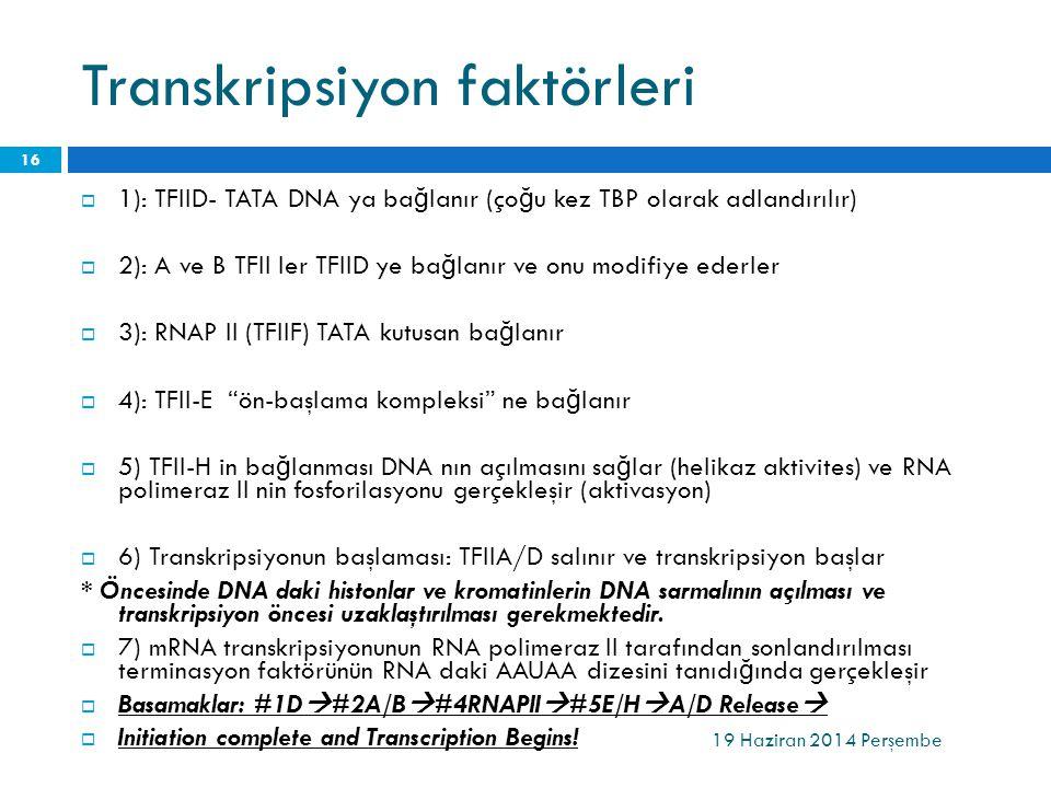 Transkripsiyon faktörleri