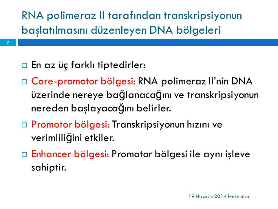 RNA polimeraz II tarafından transkripsiyonun başlatılmasını düzenleyen DNA bölgeleri