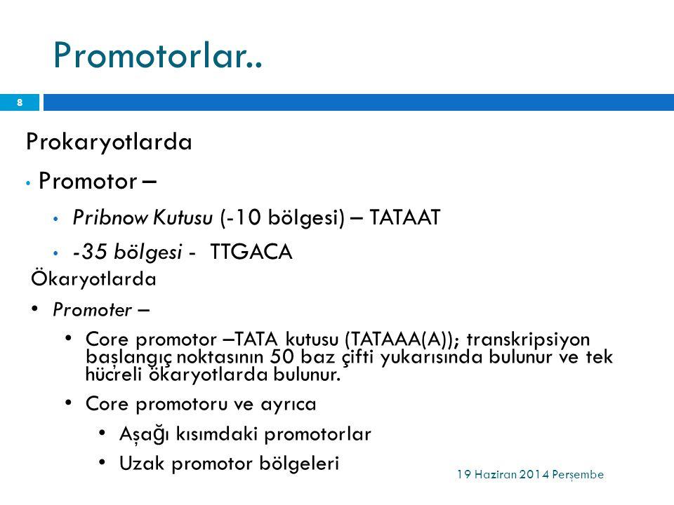 Promotorlar.. Prokaryotlarda Promotor –