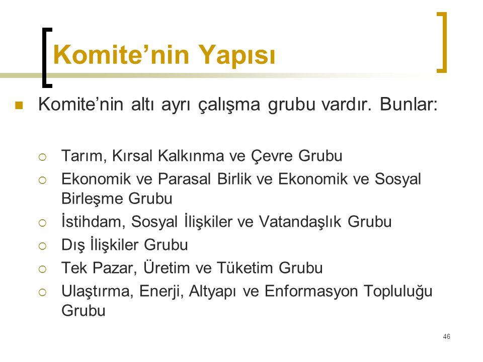 Komite'nin Yapısı Komite'nin altı ayrı çalışma grubu vardır. Bunlar: