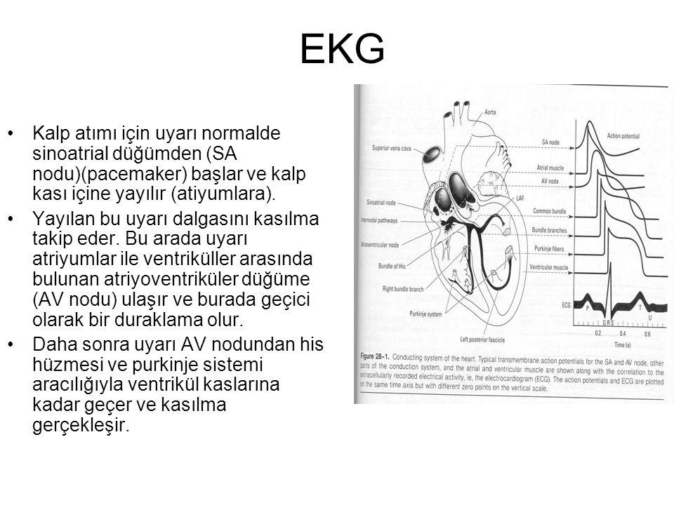 EKG Kalp atımı için uyarı normalde sinoatrial düğümden (SA nodu)(pacemaker) başlar ve kalp kası içine yayılır (atiyumlara).