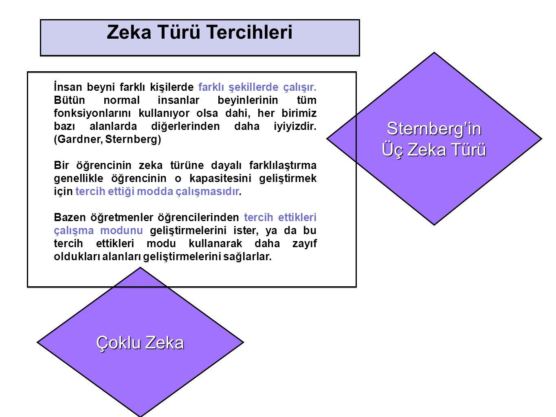 Zeka Türü Tercihleri Sternberg'in Üç Zeka Türü Çoklu Zeka