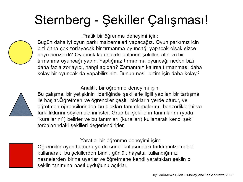 Sternberg - Şekiller Çalışması!