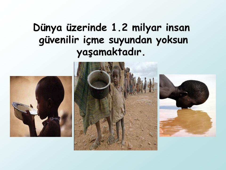 Dünya üzerinde 1.2 milyar insan güvenilir içme suyundan yoksun yaşamaktadır.