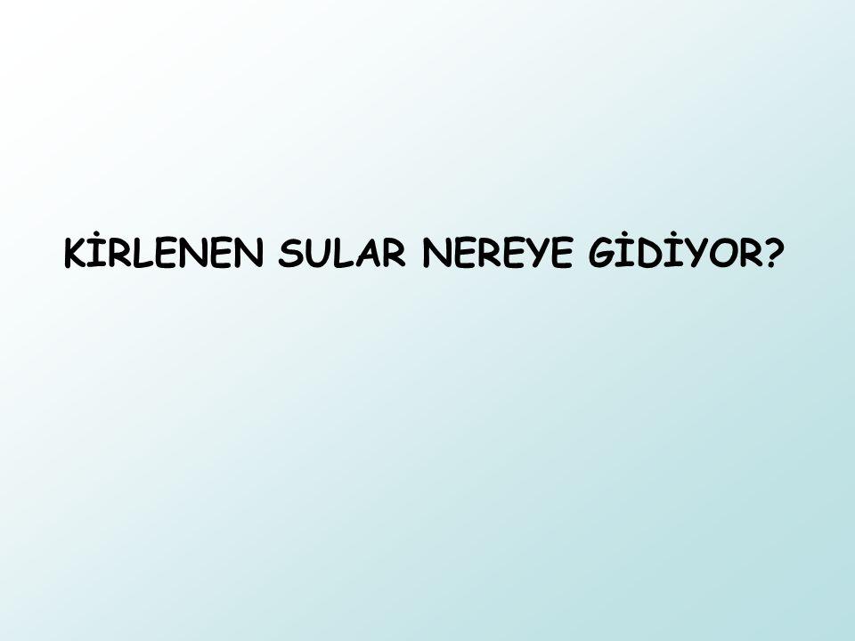 KİRLENEN SULAR NEREYE GİDİYOR