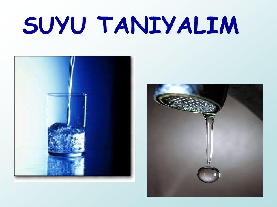SUYU TANIYALIM