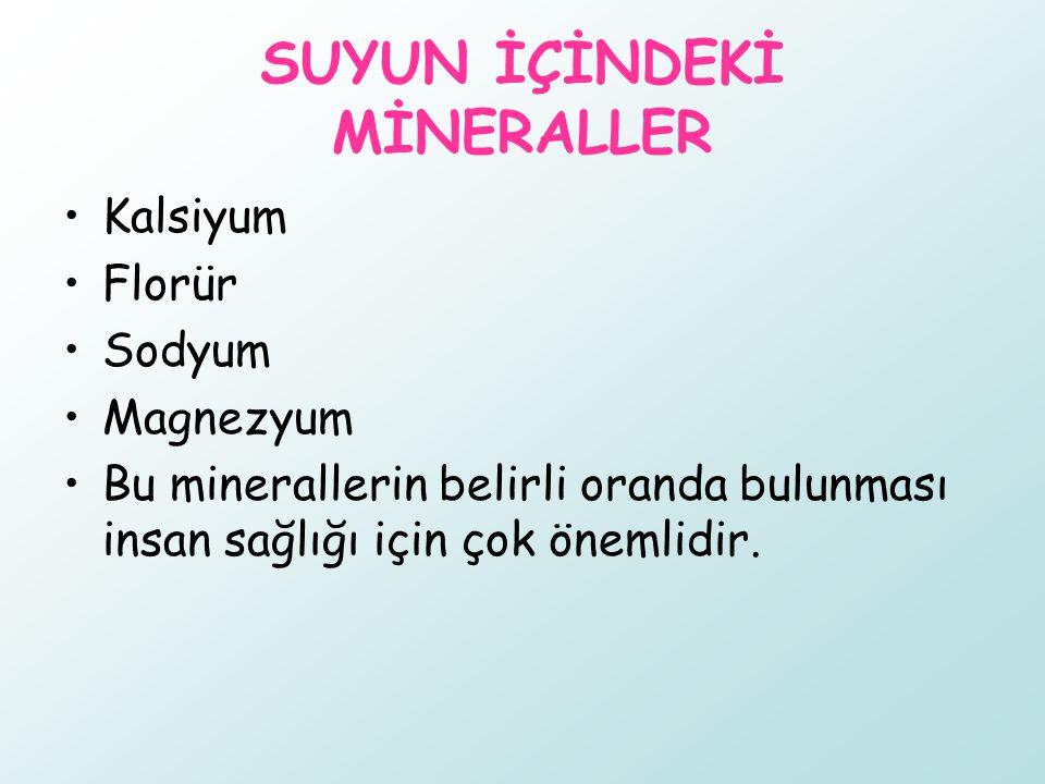 SUYUN İÇİNDEKİ MİNERALLER