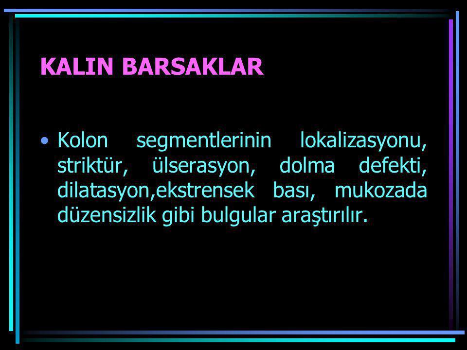 KALIN BARSAKLAR