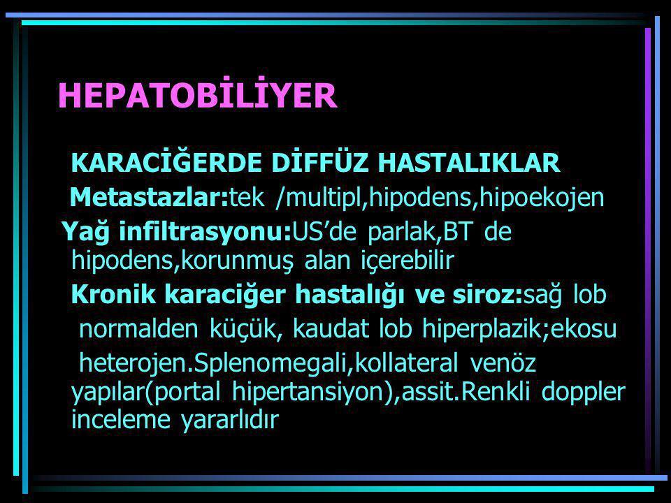 HEPATOBİLİYER KARACİĞERDE DİFFÜZ HASTALIKLAR