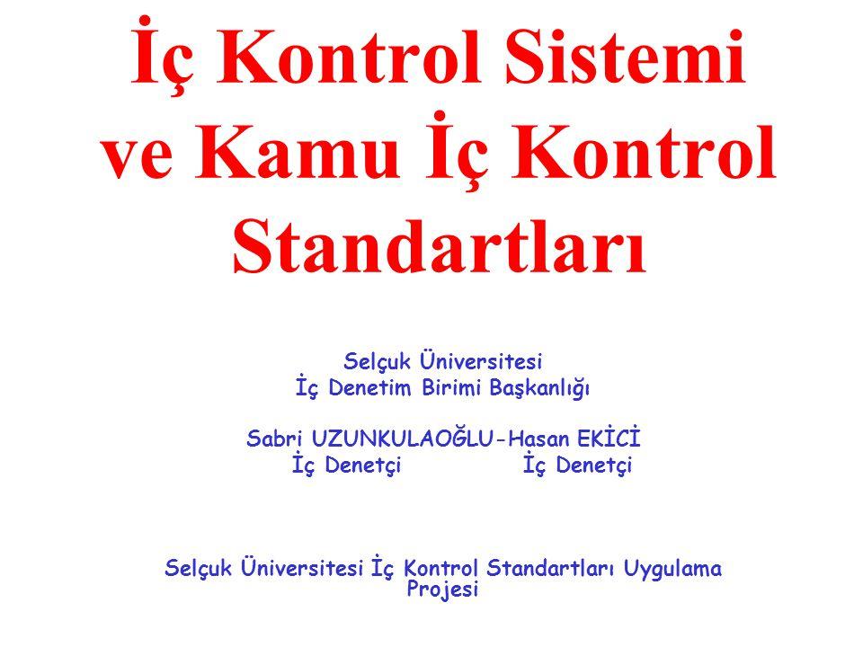 İç Kontrol Sistemi ve Kamu İç Kontrol Standartları