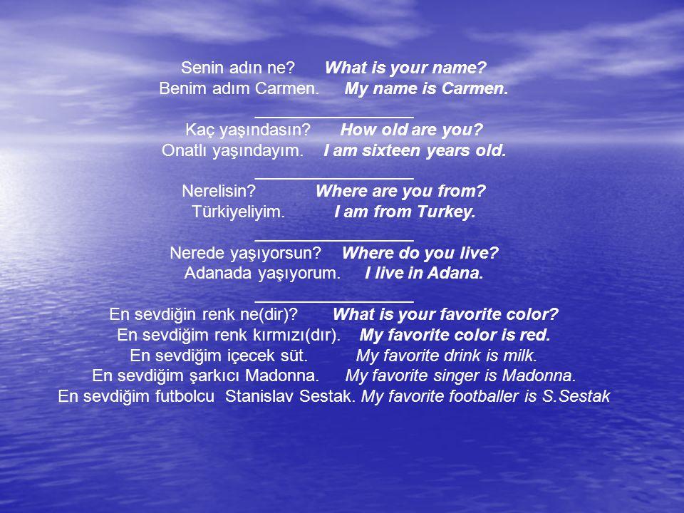 Senin adın ne What is your name