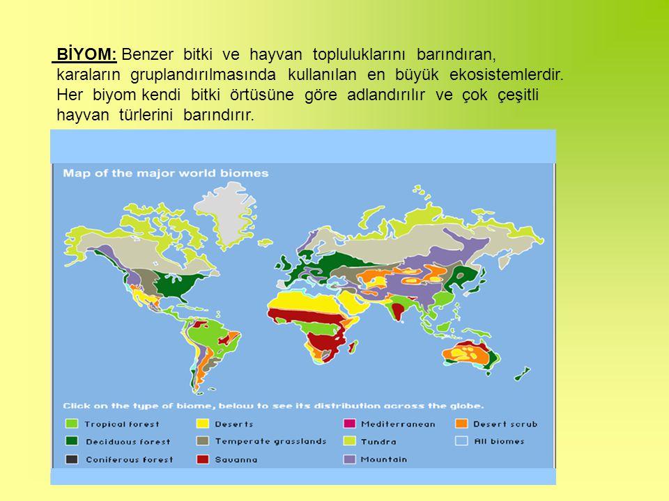 BİYOM: Benzer bitki ve hayvan topluluklarını barındıran,