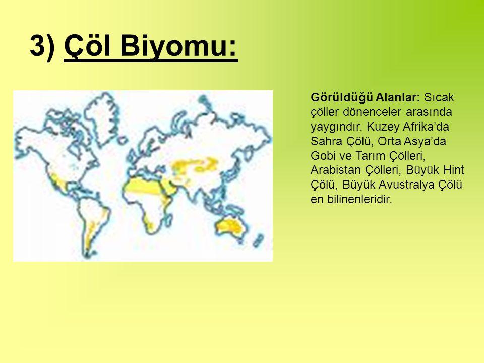 3) Çöl Biyomu: