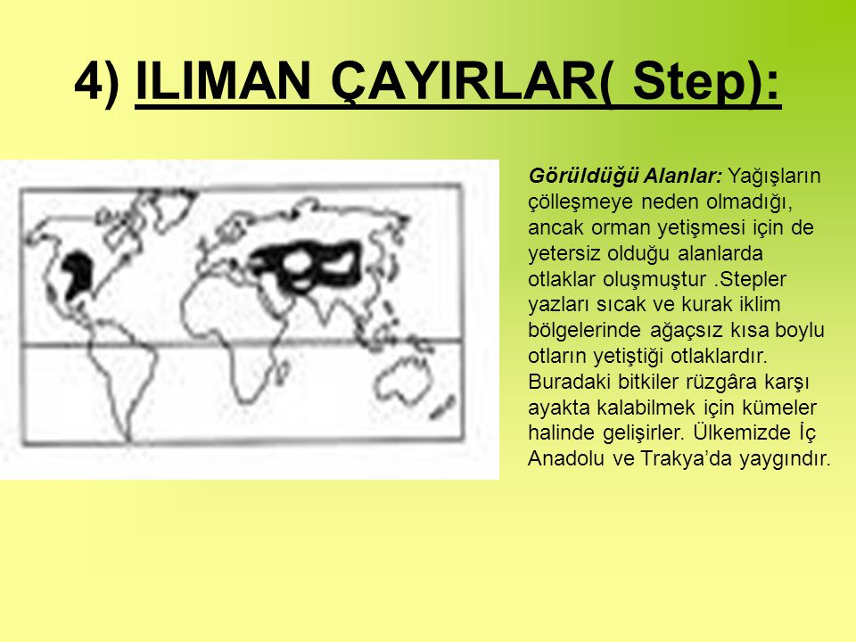 4) ILIMAN ÇAYIRLAR( Step):