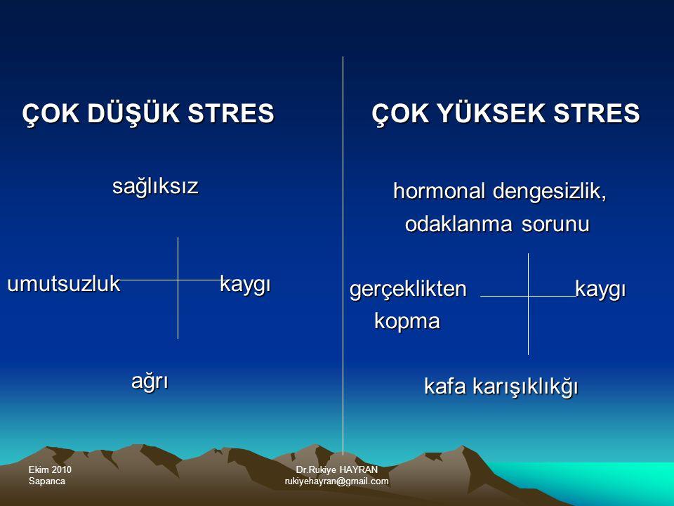 Dr.Rukiye HAYRAN rukiyehayran@gmail.com