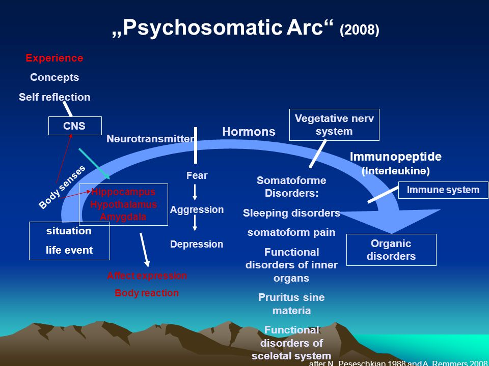"""Psychosomatic Arc (2008)"