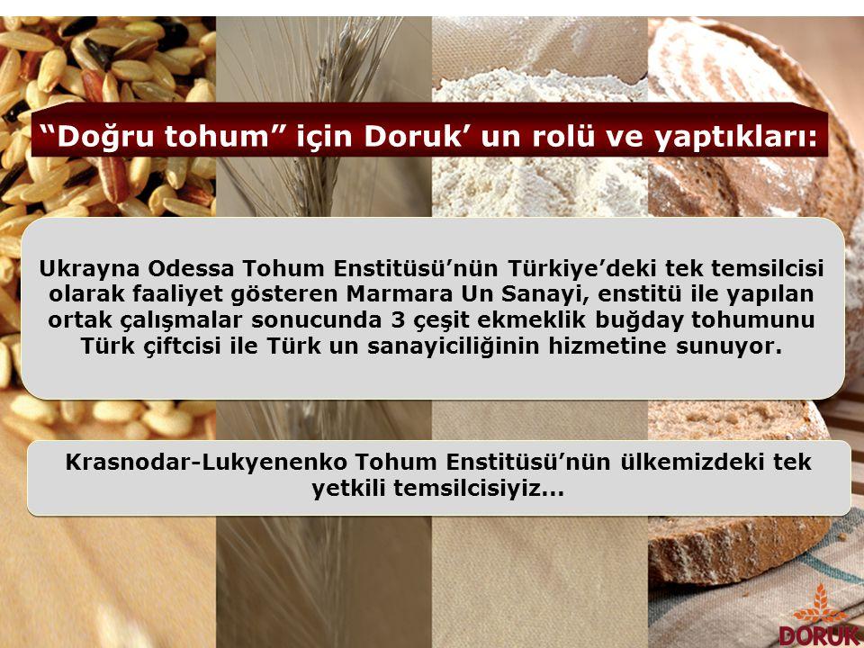 Doğru tohum için Doruk' un rolü ve yaptıkları: