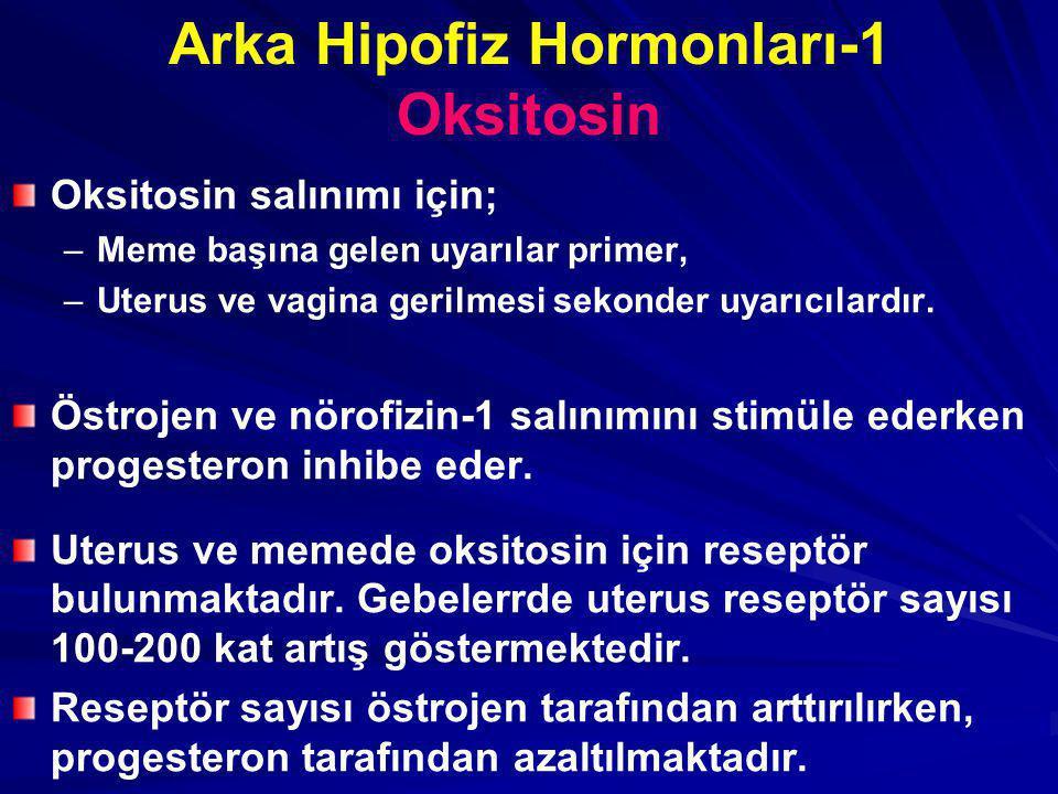 Arka Hipofiz Hormonları-1 Oksitosin