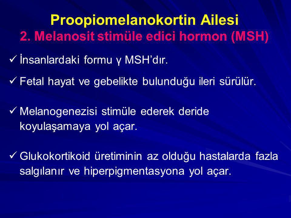 Proopiomelanokortin Ailesi 2. Melanosit stimüle edici hormon (MSH)