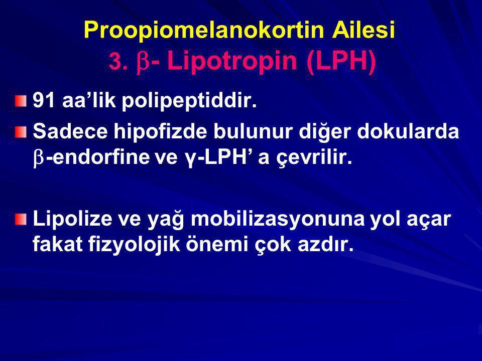 Proopiomelanokortin Ailesi 3. - Lipotropin (LPH)