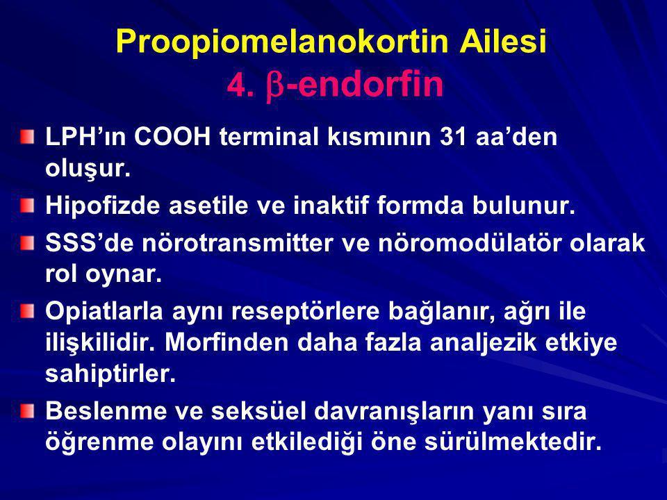 Proopiomelanokortin Ailesi 4. -endorfin