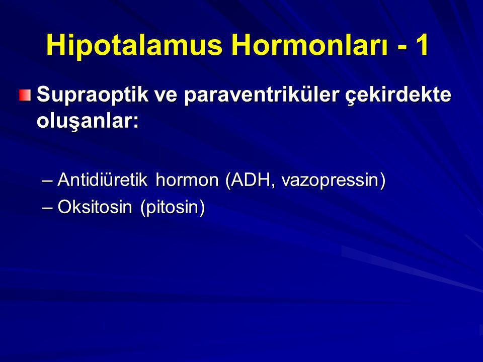 Hipotalamus Hormonları - 1