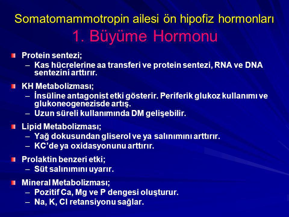 Somatomammotropin ailesi ön hipofiz hormonları 1. Büyüme Hormonu