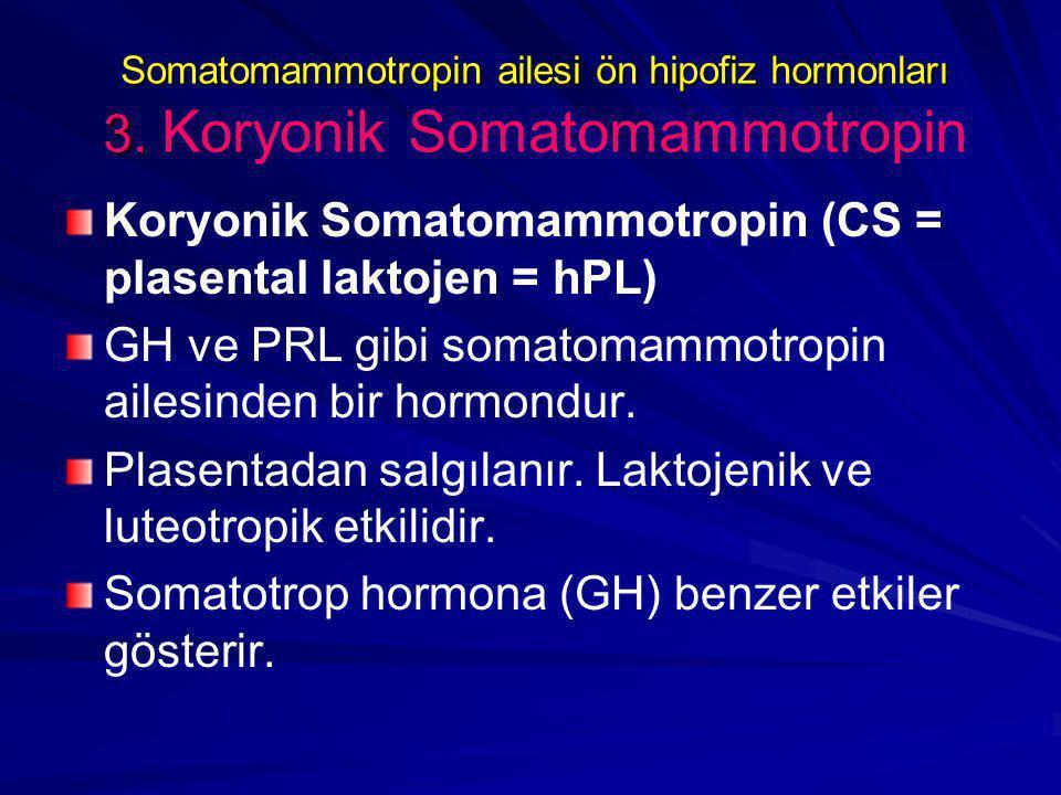 Koryonik Somatomammotropin (CS = plasental laktojen = hPL)