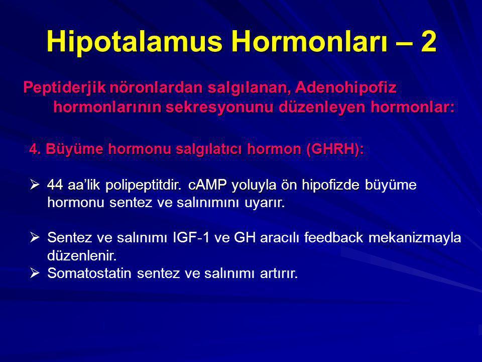 Hipotalamus Hormonları – 2