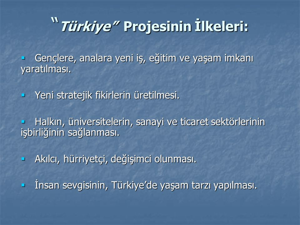 Türkiye Projesinin İlkeleri:
