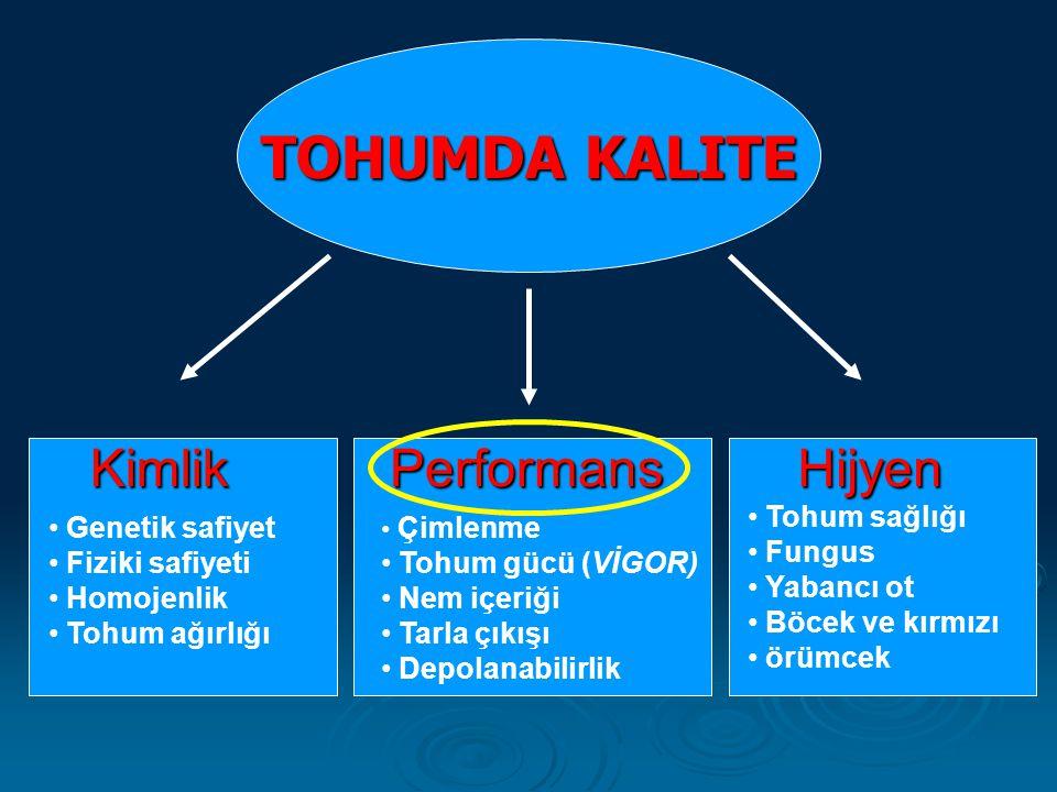TOHUMDA KALITE Kimlik Performans Hijyen Tohum sağlığı Fungus