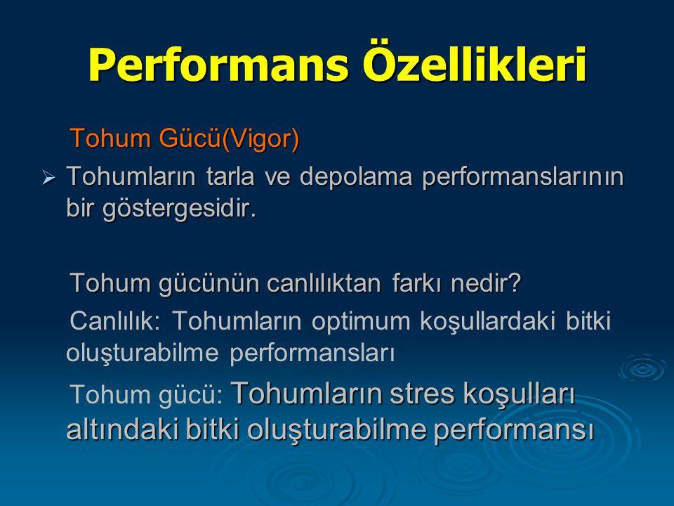 Performans Özellikleri