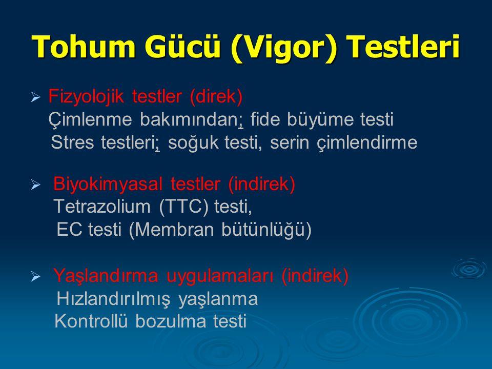 Tohum Gücü (Vigor) Testleri