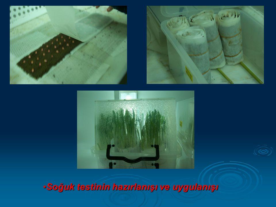 Soğuk testinin hazırlanışı ve uygulanışı