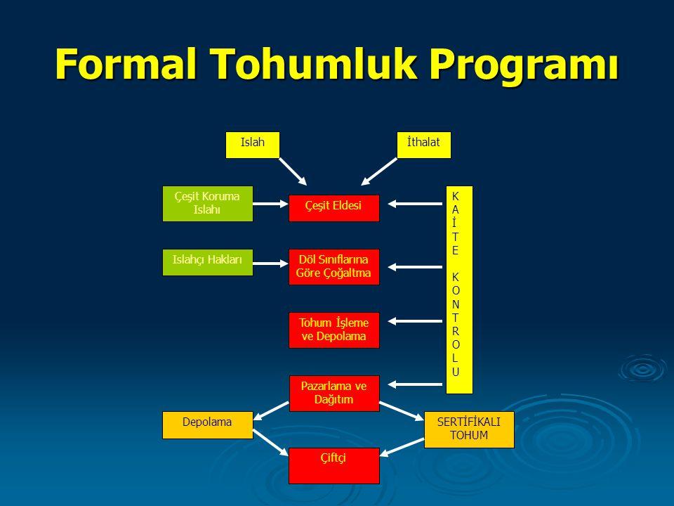 Formal Tohumluk Programı