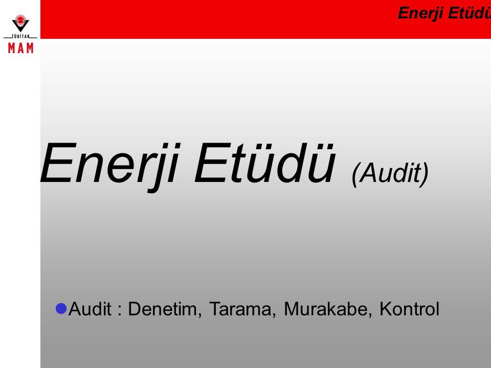 Enerji Etüdü (Audit) Audit : Denetim, Tarama, Murakabe, Kontrol
