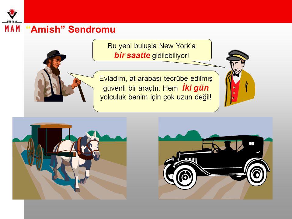 Amish Sendromu bir saatte gidilebiliyor! Bu yeni buluşla New York'a