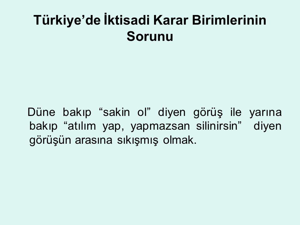 Türkiye'de İktisadi Karar Birimlerinin Sorunu