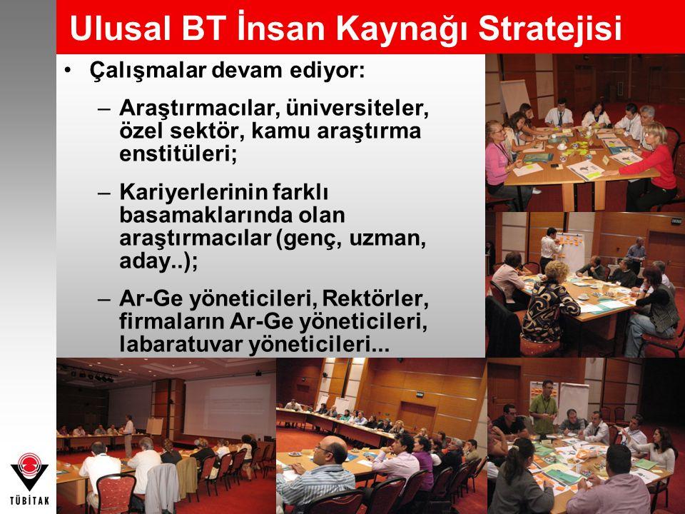 Ulusal BT İnsan Kaynağı Stratejisi