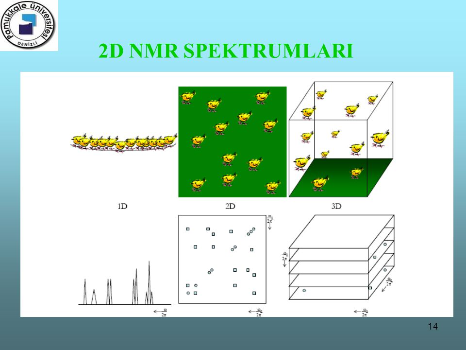 2D NMR SPEKTRUMLARI