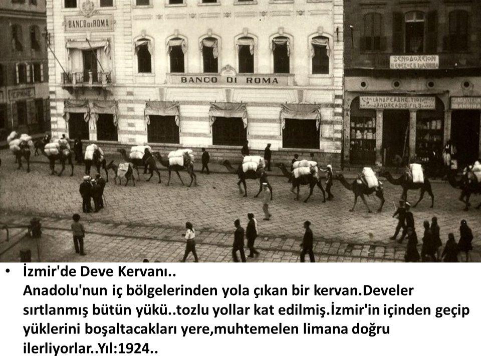 İzmir de Deve Kervanı..