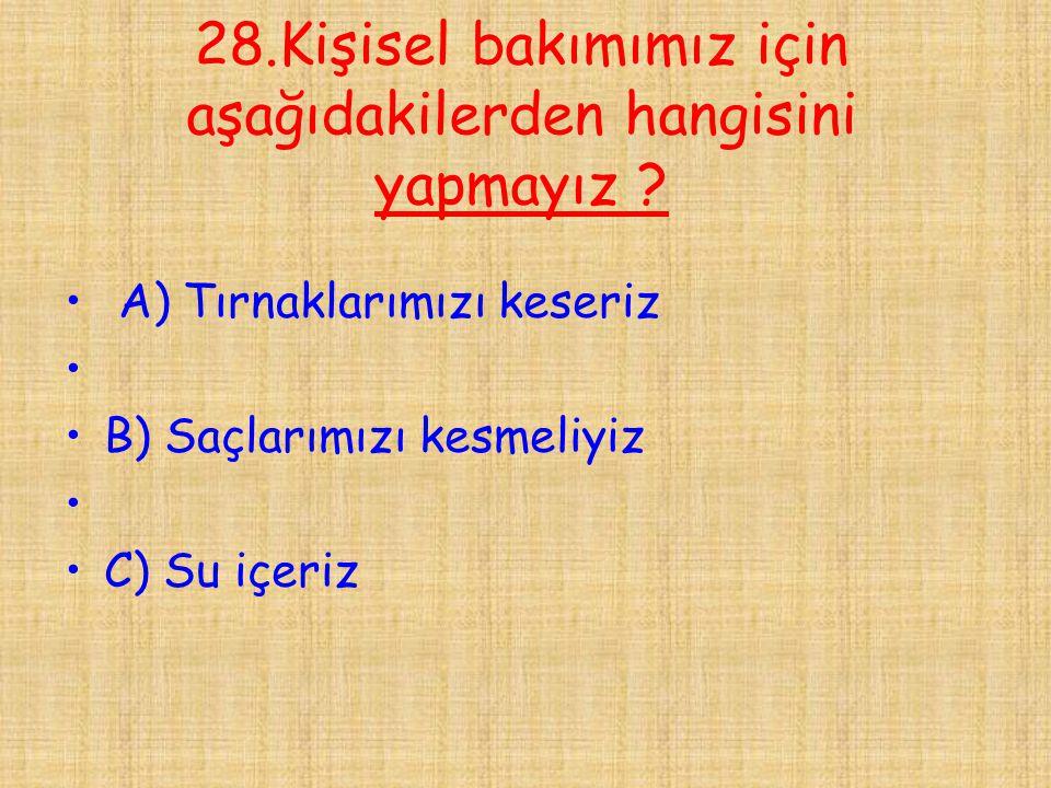 28.Kişisel bakımımız için aşağıdakilerden hangisini yapmayız