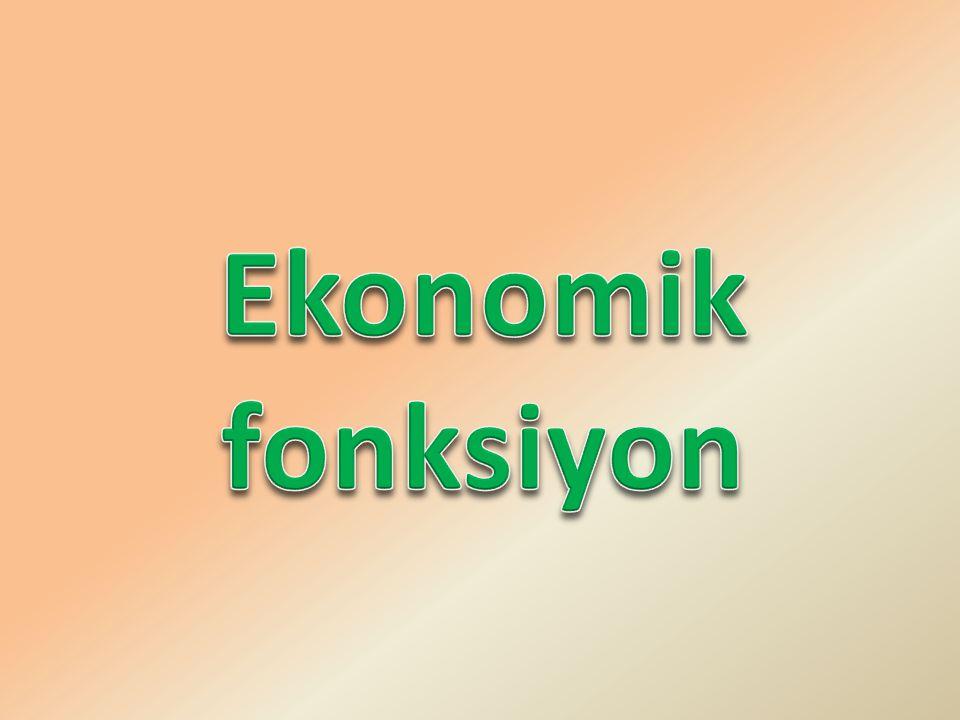 Ekonomik fonksiyon