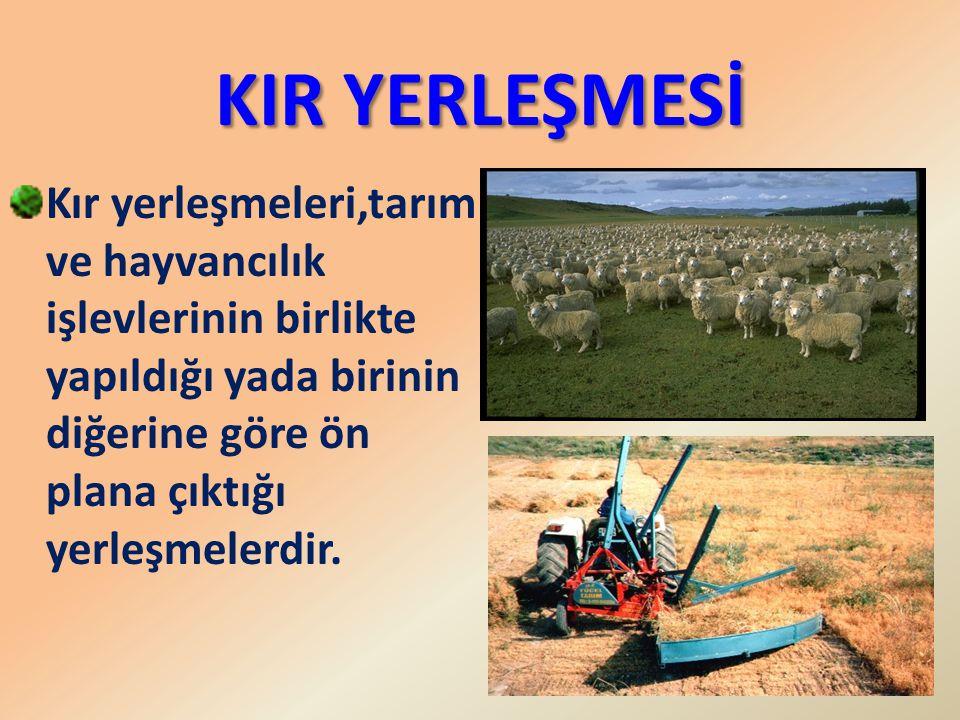 KIR YERLEŞMESİ Kır yerleşmeleri,tarım ve hayvancılık işlevlerinin birlikte yapıldığı yada birinin diğerine göre ön plana çıktığı yerleşmelerdir.