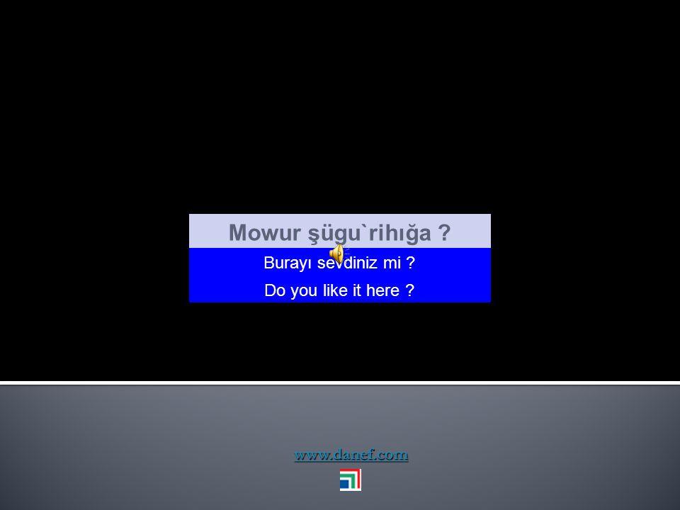 Mowur şügu`rihığa Burayı sevdiniz mi Do you like it here