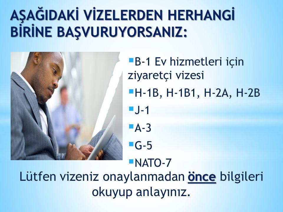 Lütfen vizeniz onaylanmadan önce bilgileri okuyup anlayınız.
