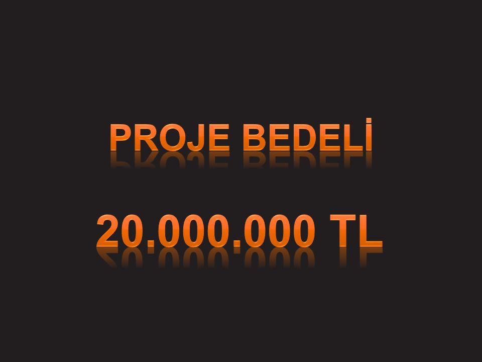 PROJE BEDELİ 20.000.000 tl