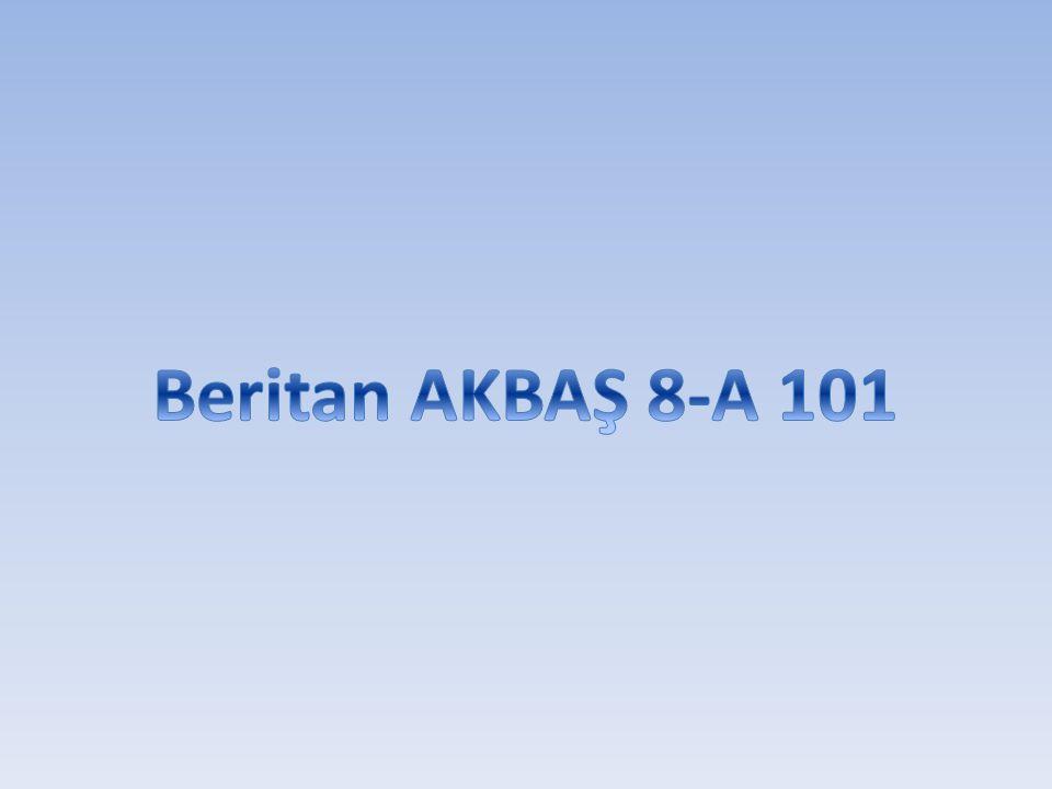 Beritan AKBAŞ 8-A 101