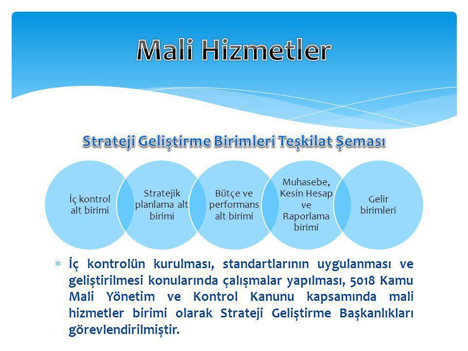 Strateji Geliştirme Birimleri Teşkilat Şeması